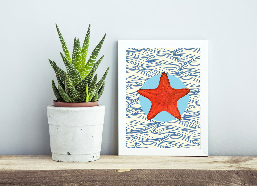 Star fish print/ wall art