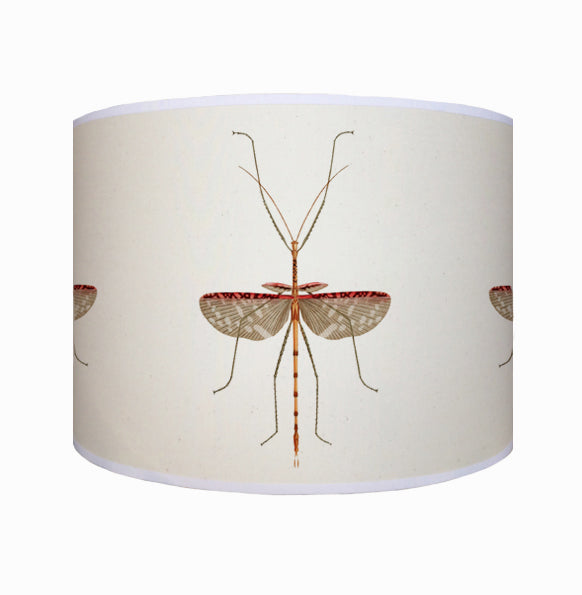 Insect shade