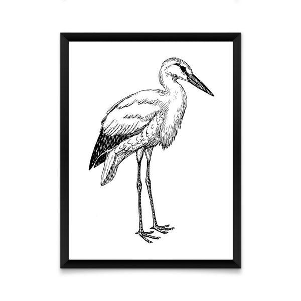 Black and white stork print/ wall art