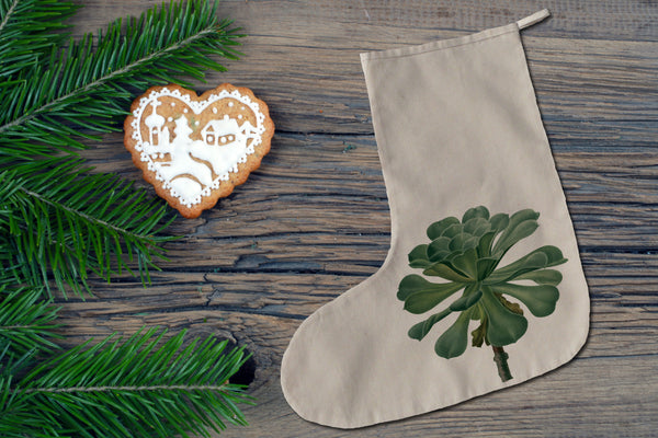 Succulent Christmas stocking