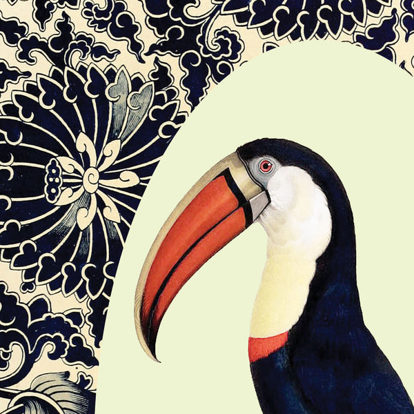 Toucan on pattern print/ wall art