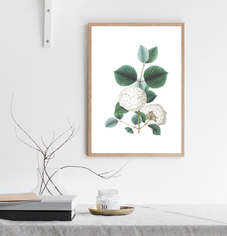 White flowers print/ wall art