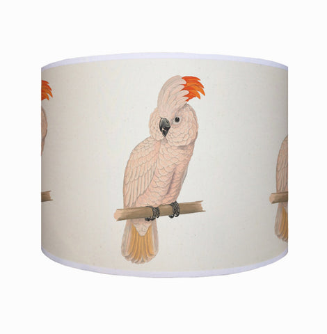 White parrot shade