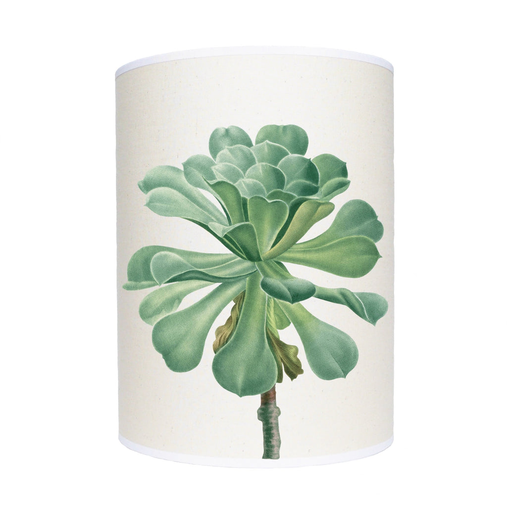 Succulent lamp shade/ ceiling shade
