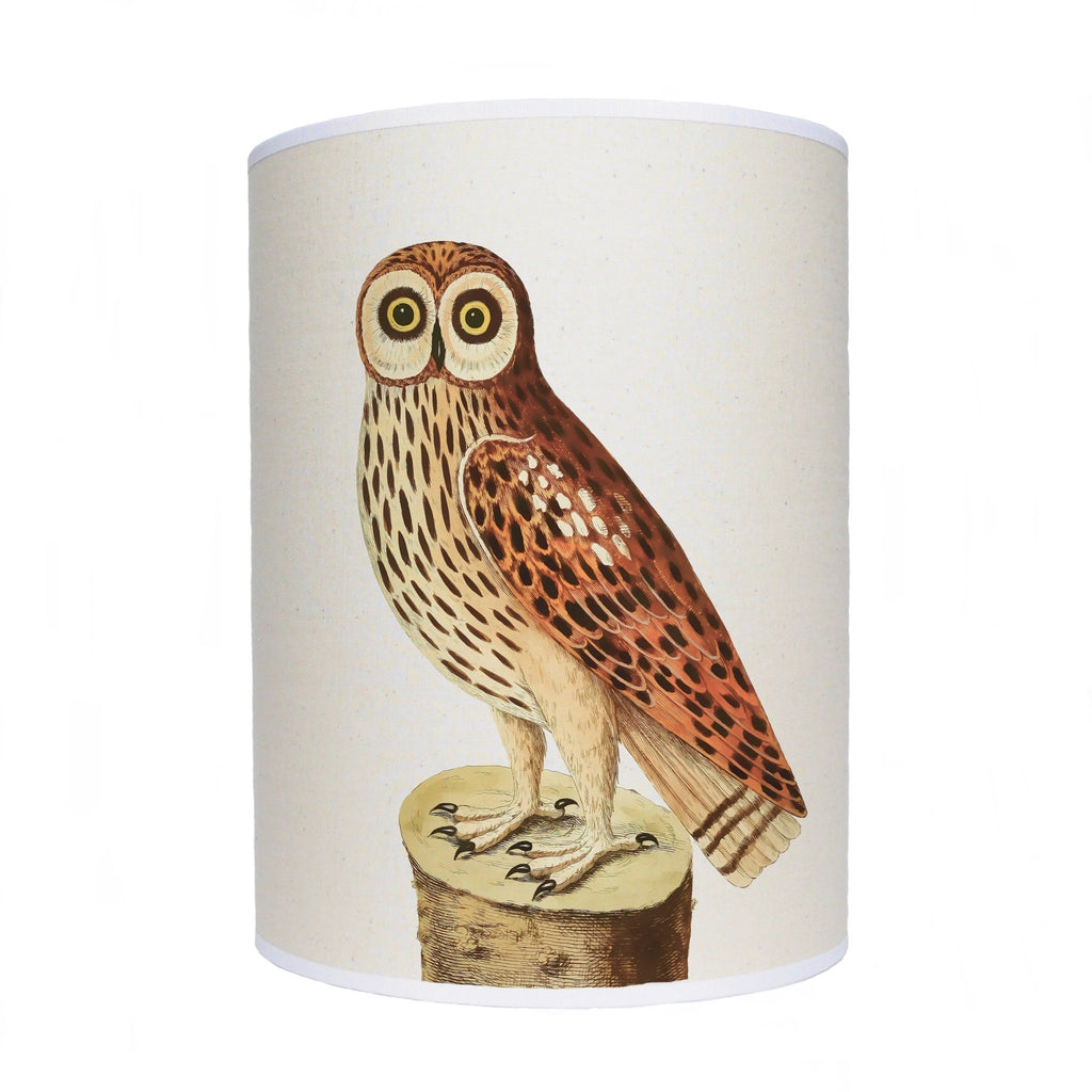 Owl lamp shade/ wide eyed owl/ ceiling pendant