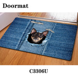 Pug Dog Printed Anti-Slip Rugs & House Doormats