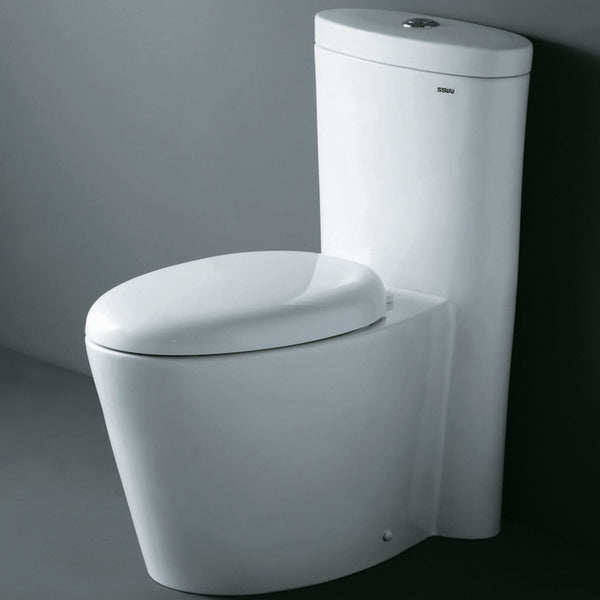 Ariel Monterey Contemporary One Piece Toilet with Dual Flush