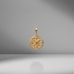 Small Compass Diamond Coin Charm