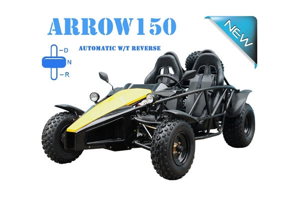 Tao Motor ARROW150 Go Kart W/ Free shipping.