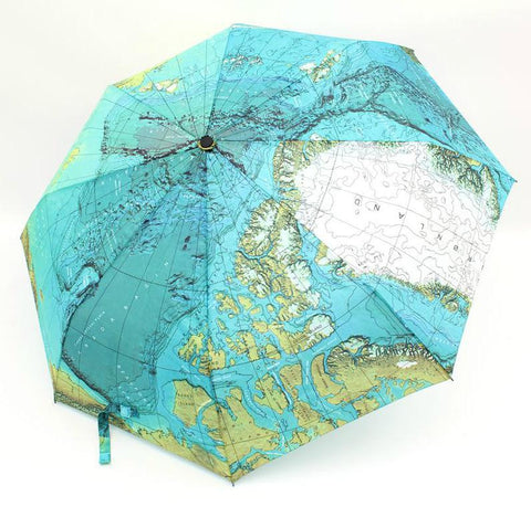Premium World Map Umbrella