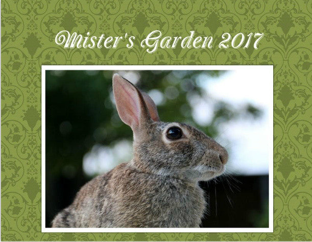 Mister's Garden 2017 Calendar Still Available