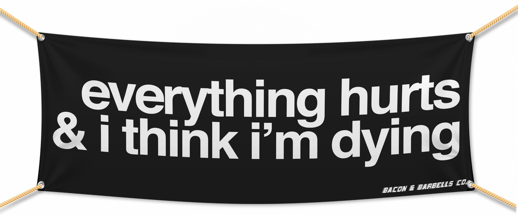 EVERYTHING HURTS & I THINK I'M DYING Banner (Black/White)