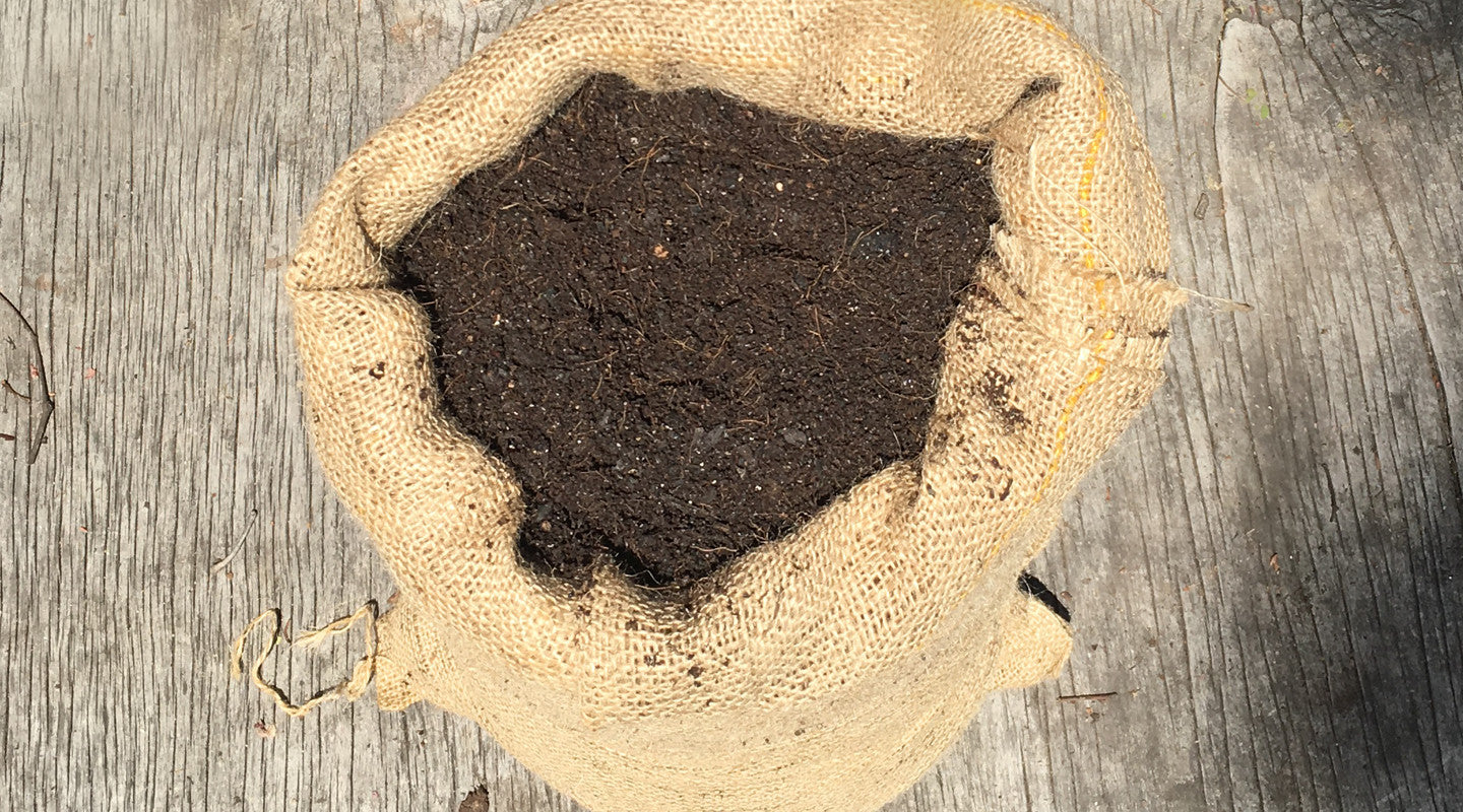 Organic Gardening Solutions | 'Coots' Compost Mix
