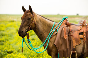 Loop vs Mecate Reins - Clinician Tack 101