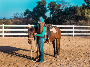 Haltering Your Horse for Respect & Trust