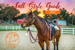 Style Your Horse For Fall- Equine Style Guide 2018