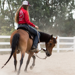Your Horse's 3 Buttons-Foundation Training Under Saddle