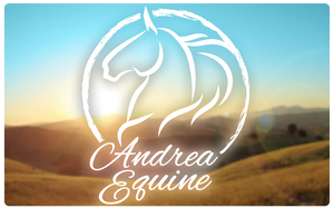 The Gift Card - Andrea Equine
