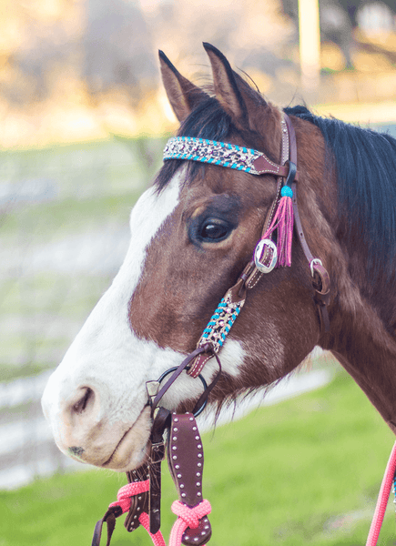 """Arroyo"" Dotted Turquoise Cheetah Browband w/Pink Tassels & Swarovski Crystals - Andrea Equine"