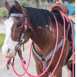 """Arroyo"" Pink/Turquoise Cheetah Mecate Tack Set - Andrea Equine"