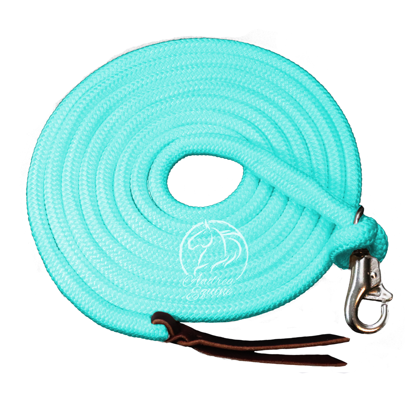 14 Ft Turquoise Clinician Weighted Leadrope w/ Snap - Andrea Equine