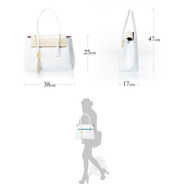 ARIANNA Sabae-Clear: Flap shoulder bag (IVSN_WH_BRbar)
