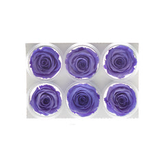 Artificial Forever Roses Multiple Colors, 6 Pack