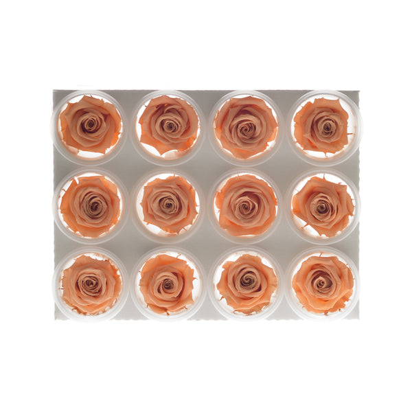 Artificial Forever Mini Roses Multiple Colors, 12 Pack