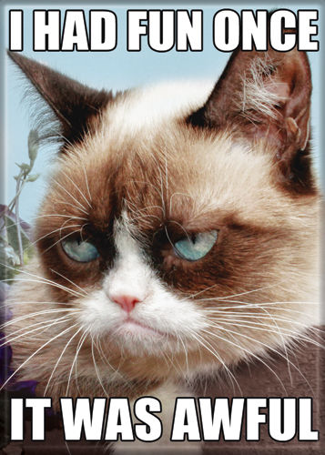 Grumpy Cat Magnet-It was Awful