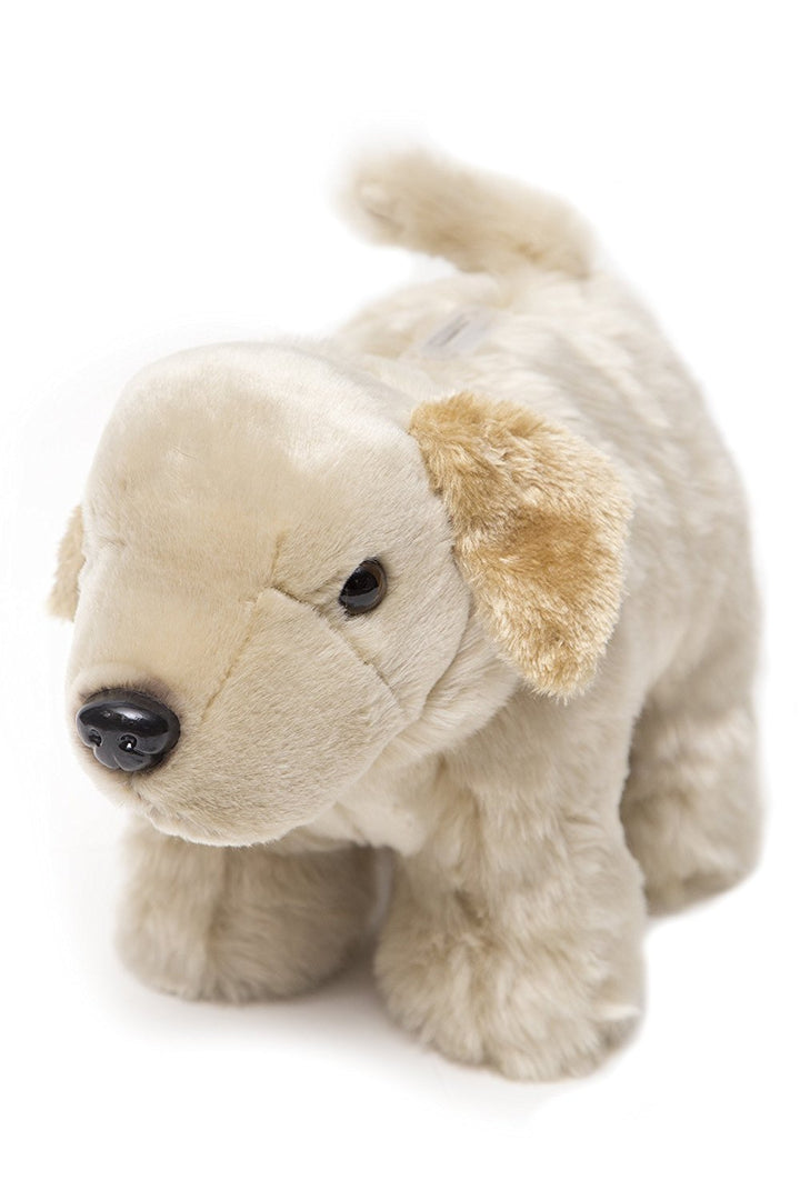 Carstens Yellow Lab Coin Bank