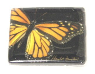 Harold Feinstein Butterfly Magnets- Monarch