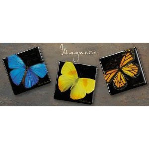Harold Feinstein Square Butterfly Magnets -Set of three