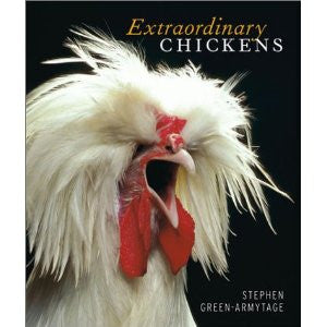 Extraordinary Chickens