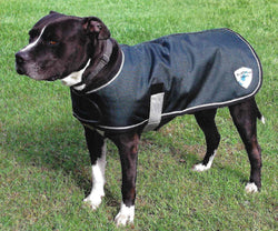 Kensington Platinum Edition Dog Blanket Coat