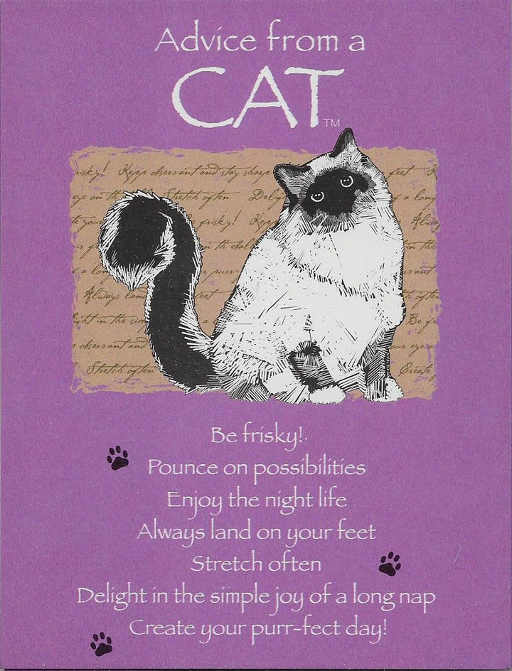 Advice from a cat 8 Blank Notecards and Envelopes