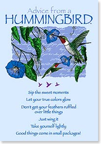 Advice from a Hummingbird Blank Notecards wih Envelopes - Freedom Day Sales