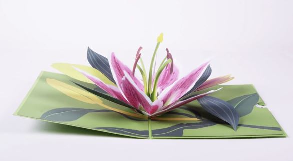 Lovepop Lily Bloom Pop Up Greeting Card
