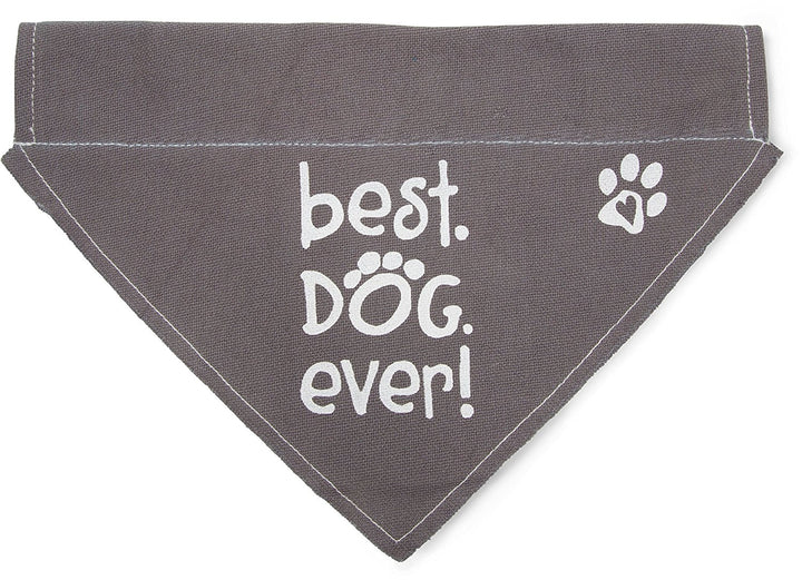Best Dog Ever Canvas Slip On Pet Bandanna