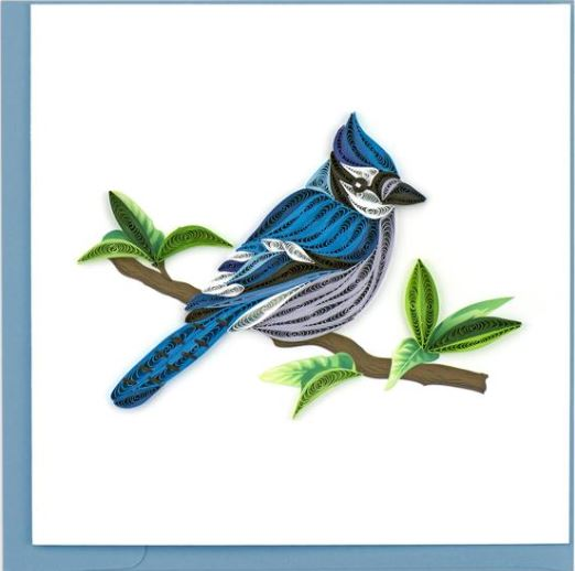 Quilling Card Blue Jay Greeting Card