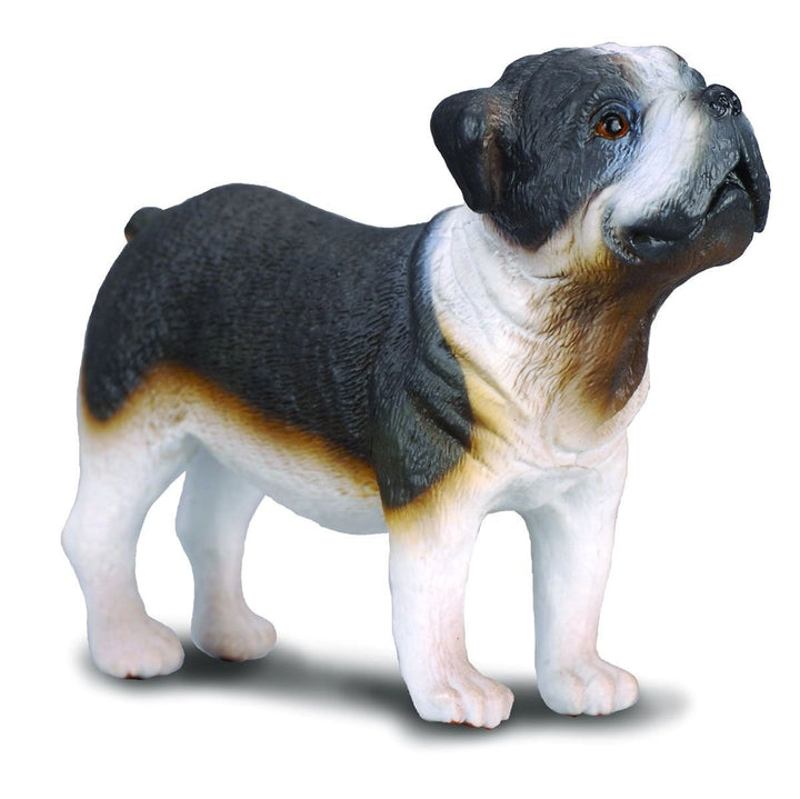 Reeves Collecta Bull Dog