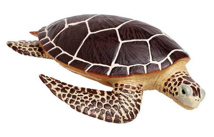 Safari Limited Sea Turtle
