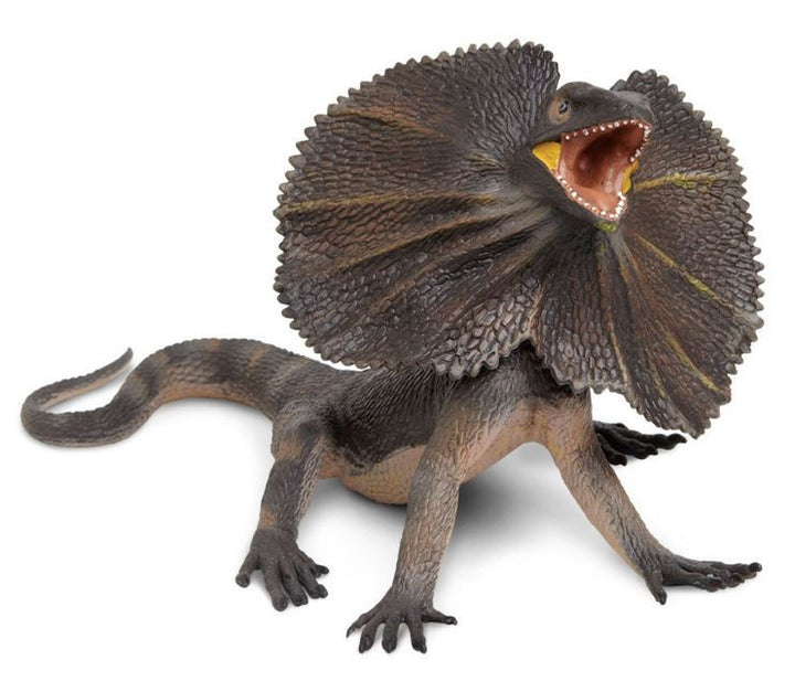Safari Frilled Lizard