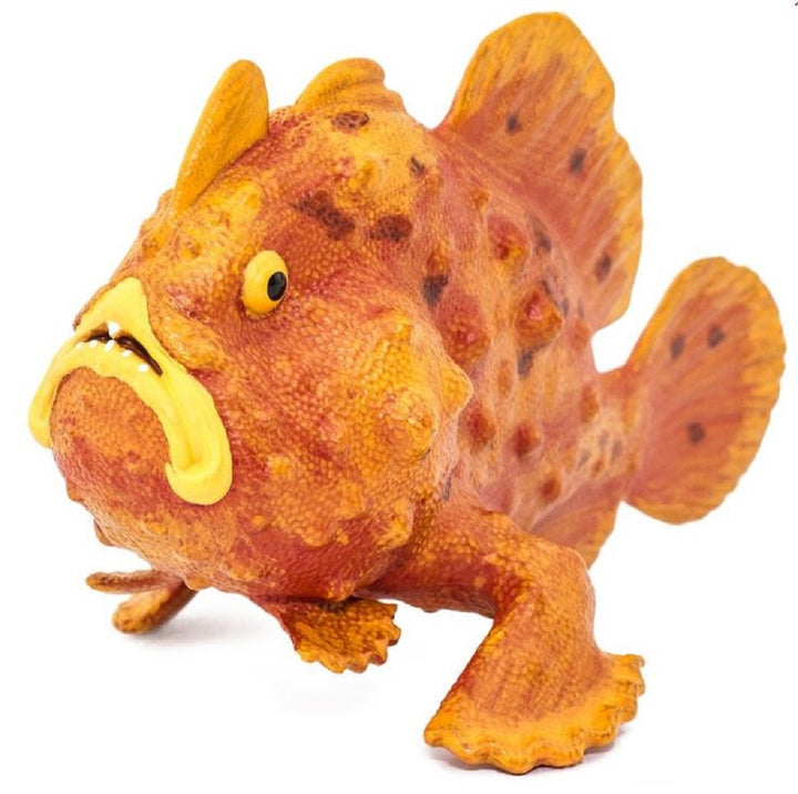 Safari Frogfish