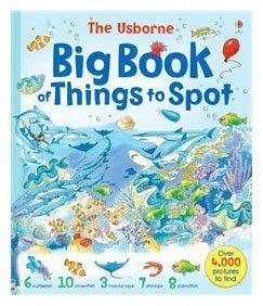 Big Book of Things to Spot (1001 Things to Spot) Paperback