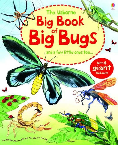 The Usborne Big Book of Big Bugs: And a Few Little Ones Too…