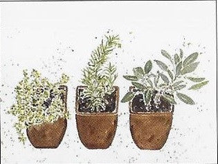 Boxed Notecards- Thyme, Rosemary & Sage