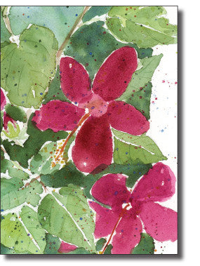 Boxed Cards- Hibiscus