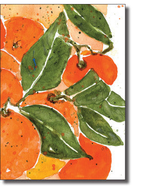 Boxed Cards- Citrus Fruits