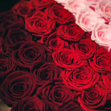 The Ombre - Limited Valentine's Day Edition - 36 Everlong* roses