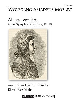 Mozart, Wolfgang Amadeus -Allegro con brio from Symphony No. 25, K. 183 for Flute Orchestra
